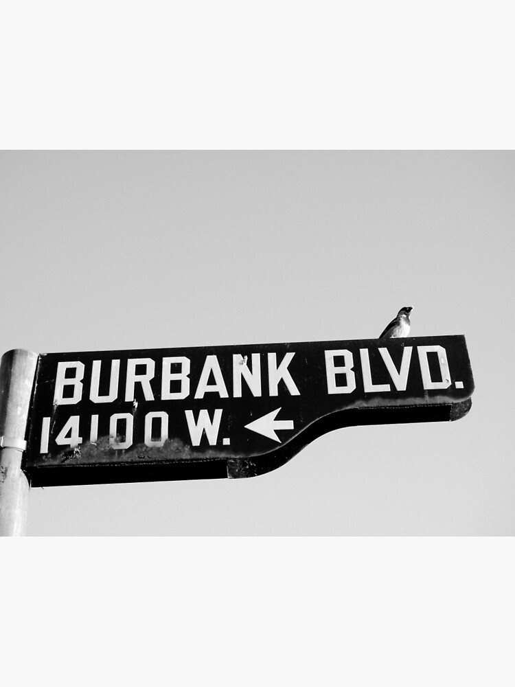 Burbank and Bird, Los Angeles, California by douglasewelch
