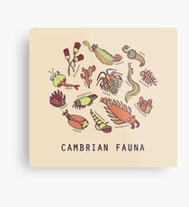 Cambrian Critters Metal Print