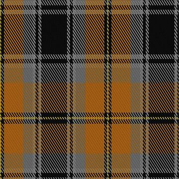 01410 Clyde Valley HOG Tartan by Detnecs2013