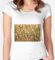 Ripening Wheat Field Women's Fitted Scoop T-Shirt