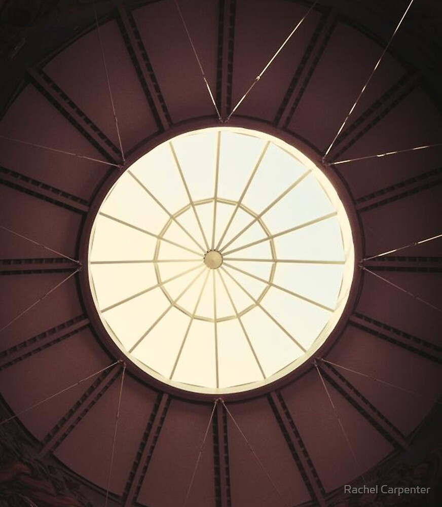 Circular by Rachel Carpenter