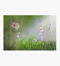 Meadow Float Photographic Print