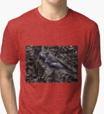 Jackdaw Tri-blend T-Shirt