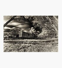 Derelict train Photographic Print