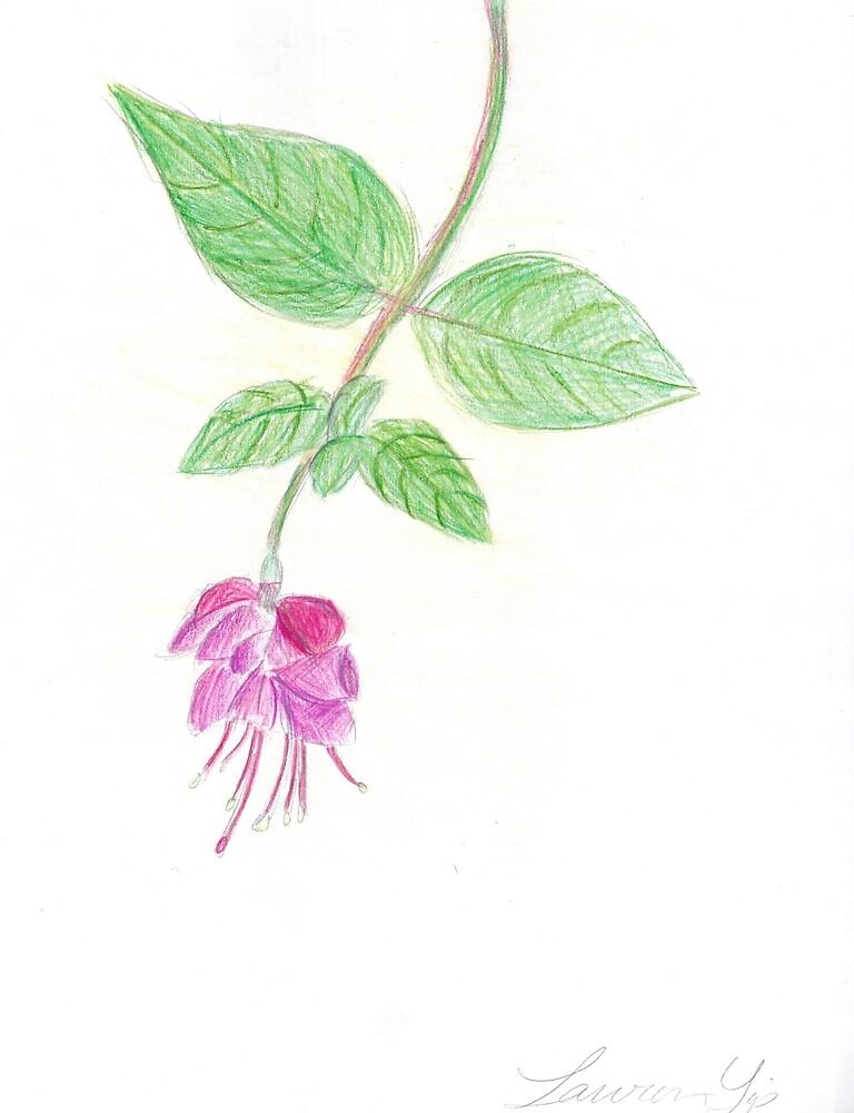 Fuschia by tumbleberries
