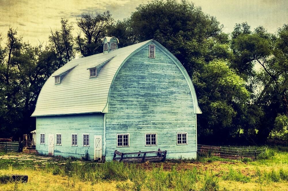 Aqua Barn by Zigzagmtart