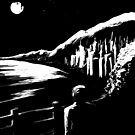 Moonlight by biev