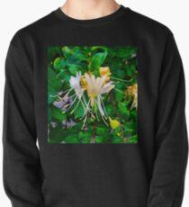 Honeysuckles Pullover