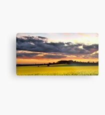 Canola Sunset Metal Print