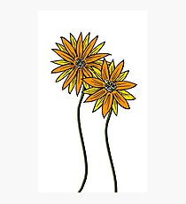 Two Daisies Coloured Orange with Transparent Background Photographic Print