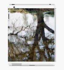 Reflection iPad Case/Skin