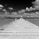 The pier  by Alessandra Antonini