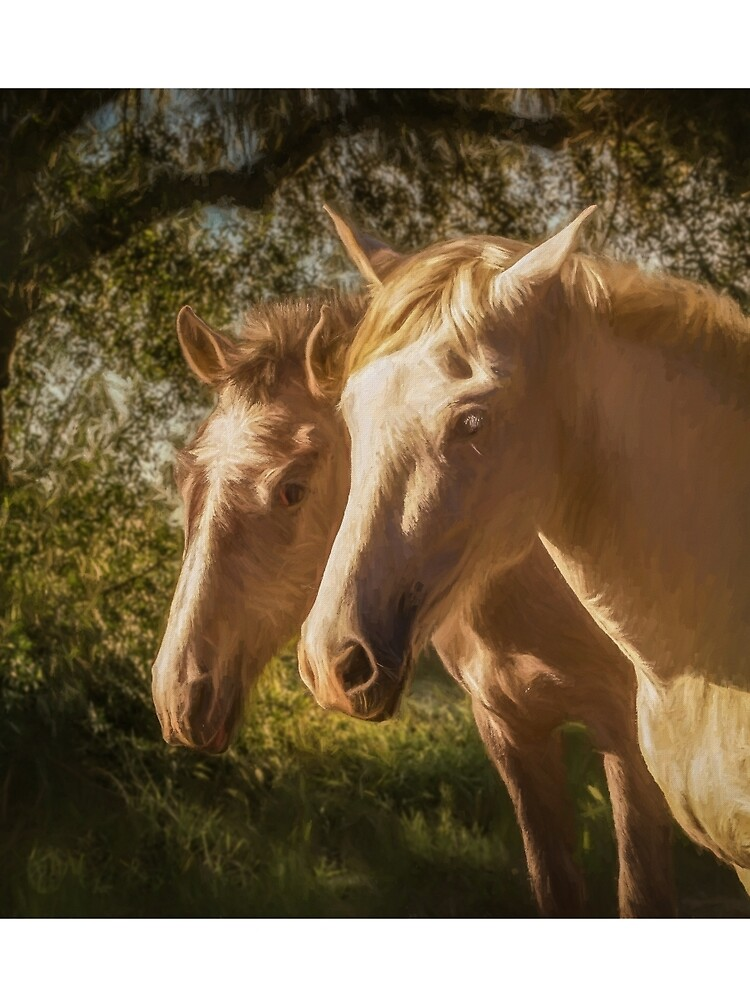 Two Andalusian horses in the early morning by pedroec1