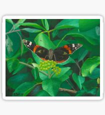 red admiral - green eyes Sticker