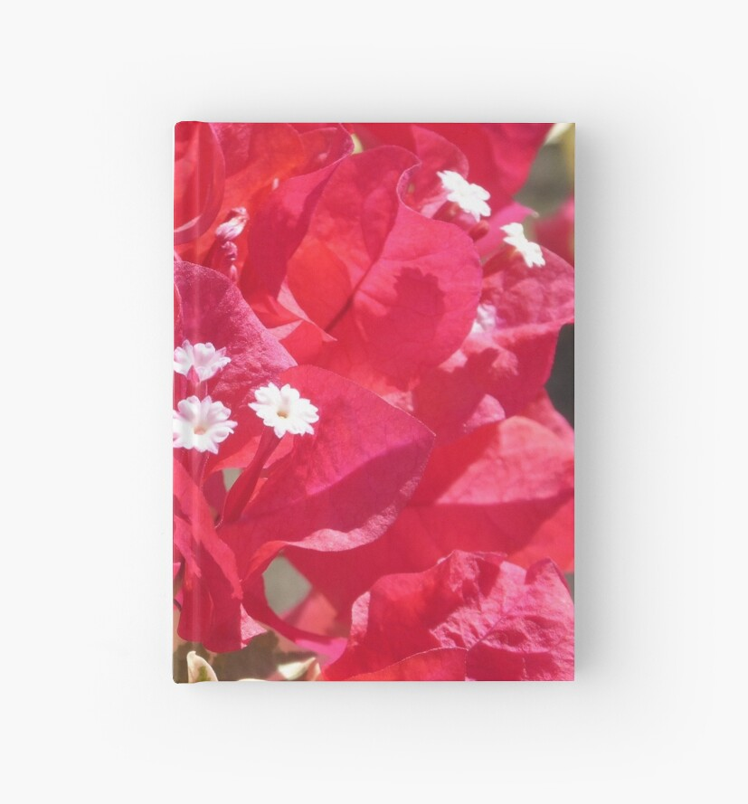 Red Bougainvillea by Margaret Brooks
