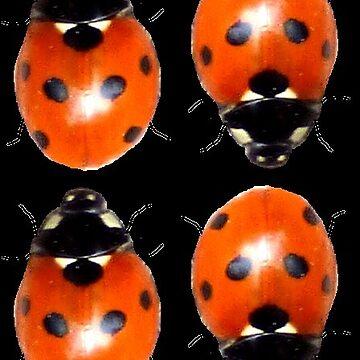 Lotsa Ladybird - black by ShmooberryPie