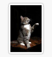 Aloof cat Sticker