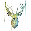 Deer by Calum Margetts Illustration
