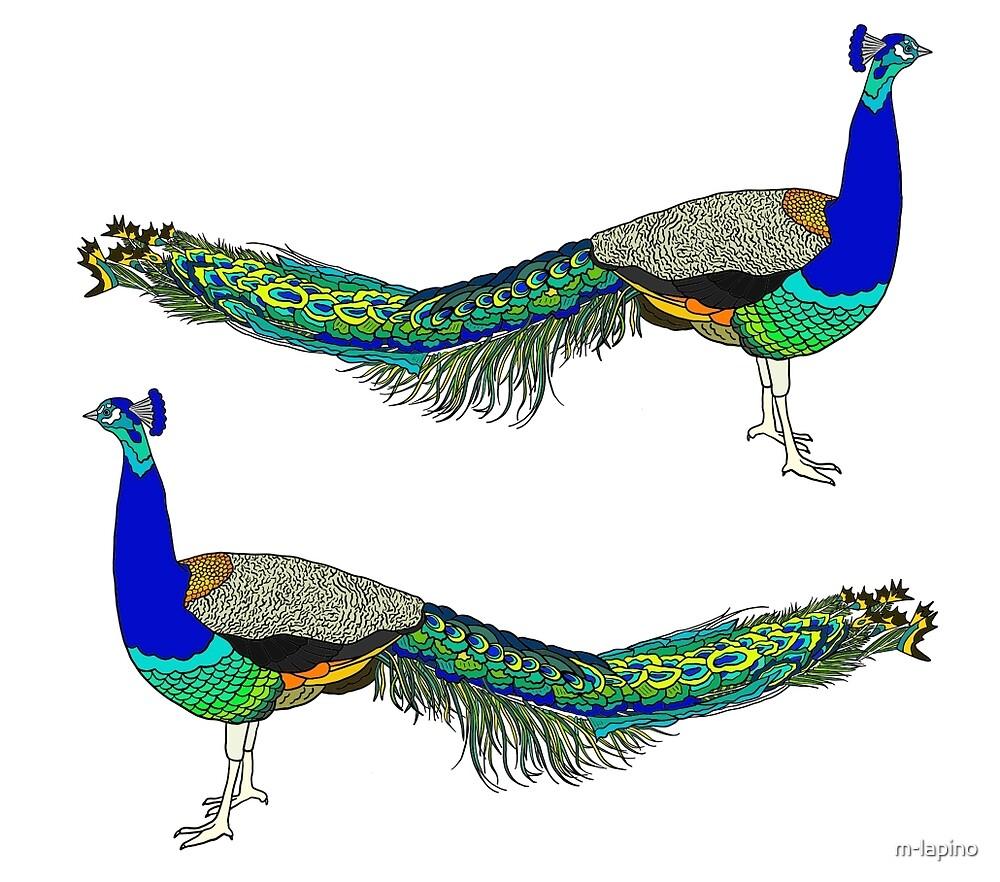 Peacock by m-lapino