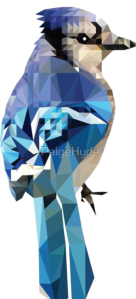 Blue Jay by PaigeHyde