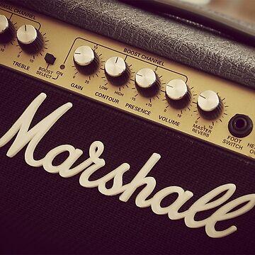 Amplificador Marshall de ALF11