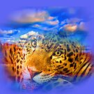 Leopard In THE Sky by Delights