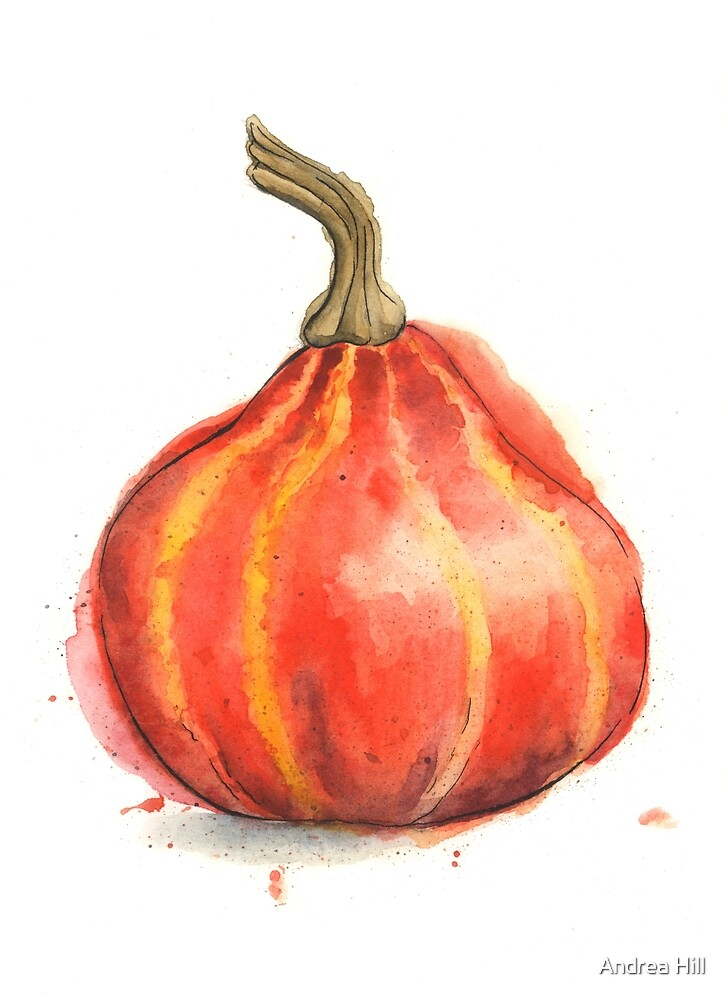 Ambercup Squash Painted in Watercolor by Andrea Hill