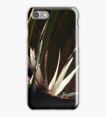 nature and light - naturaleza y luz iPhone Case/Skin