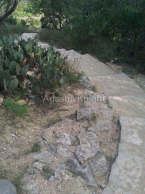 Crooked Path by Adasha Knight