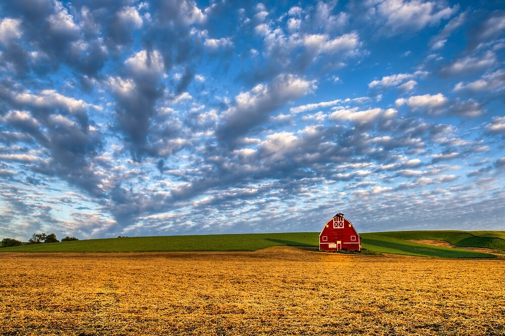 Palouse Country Barn with Dramtic Cloudscape by Zigzagmtart
