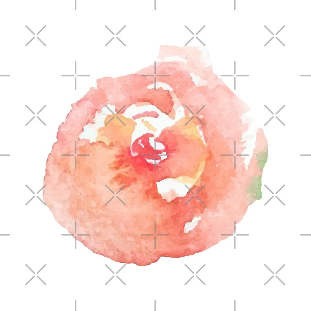 Rose watercolor by Julli