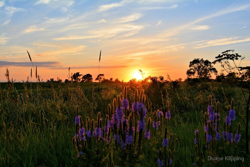 Summer Prairie Sunset by Duane Klipping