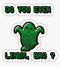 LINUX BRO Sticker