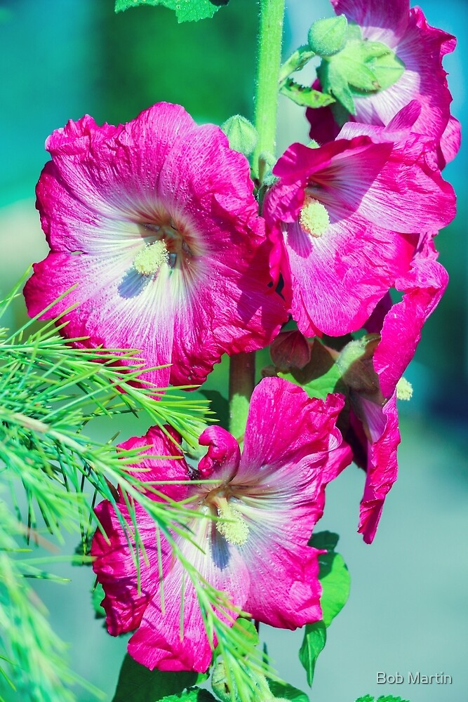 Pink White Green by Bob Martin