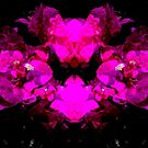 Abstract neon bougainvilleas on black by cesarpadilla