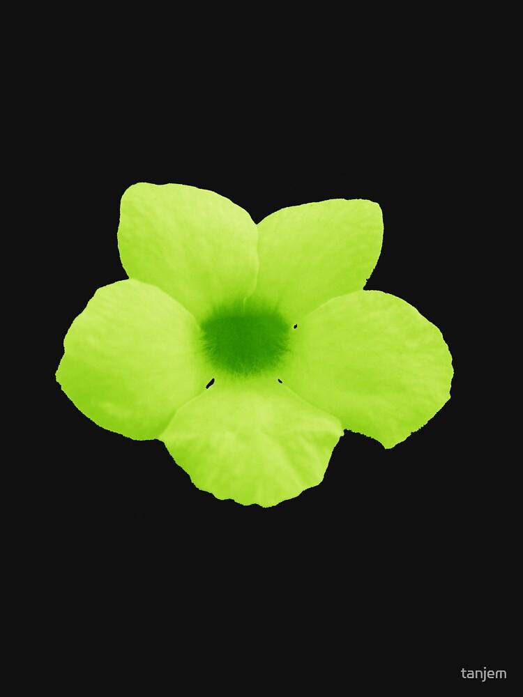 Green Potato Flower by tanjem