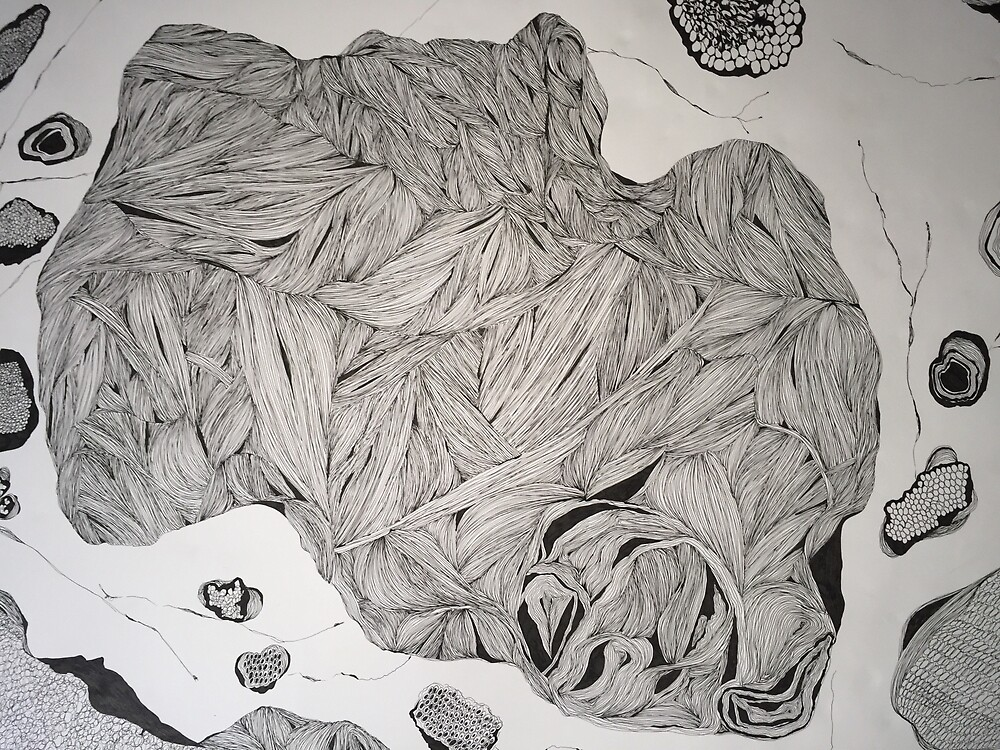 Under the microscope, ink drawing  by morgsmiddleton