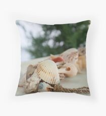 Colorful sea shells, shallow depth of field Throw Pillow