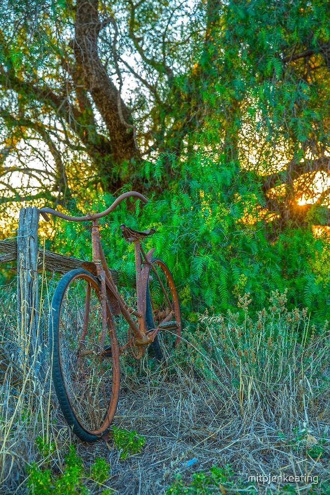 Old Rustic Ladies Bicycle... by mitpjenkeating