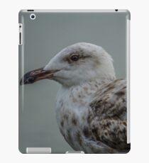 Gull iPad Case/Skin