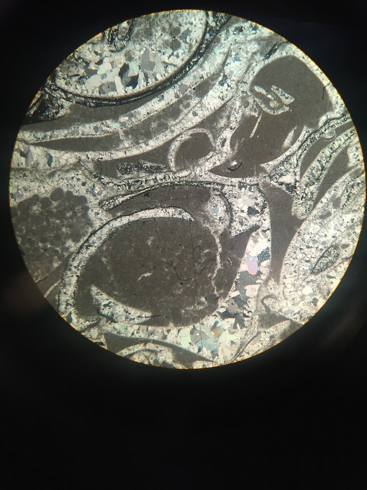 Minerals under the Microscope by morgsmiddleton