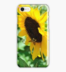 Buzzing for Sunflowers iPhone Case/Skin