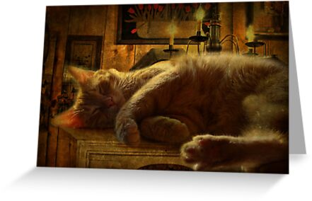 Sleeping cat on the mantle by vigor
