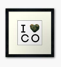 Colorado Green State Framed Print