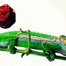 Enigmatic hameleon by iamelmana