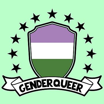 Genderqueer Shield by ace-oddity
