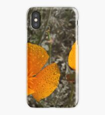 Mexican Tulip Poppy iPhone Case/Skin
