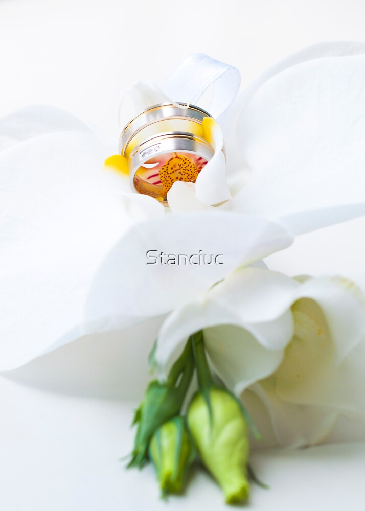Close up on flower arrangment with white orchid and wedding rings by Stanciuc