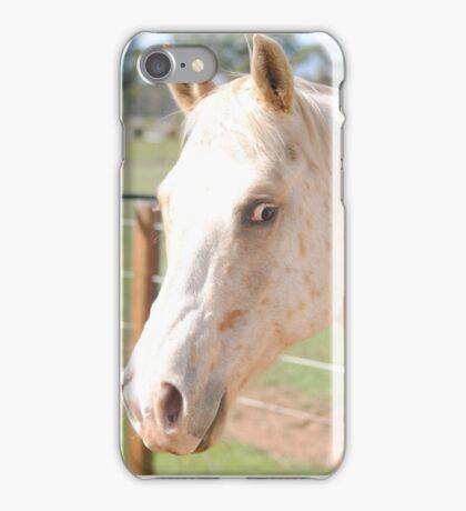 Jedy the horse iPhone Case/Skin