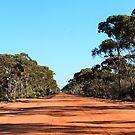 Yellowdine Track Outback WA by IsithombePhoto